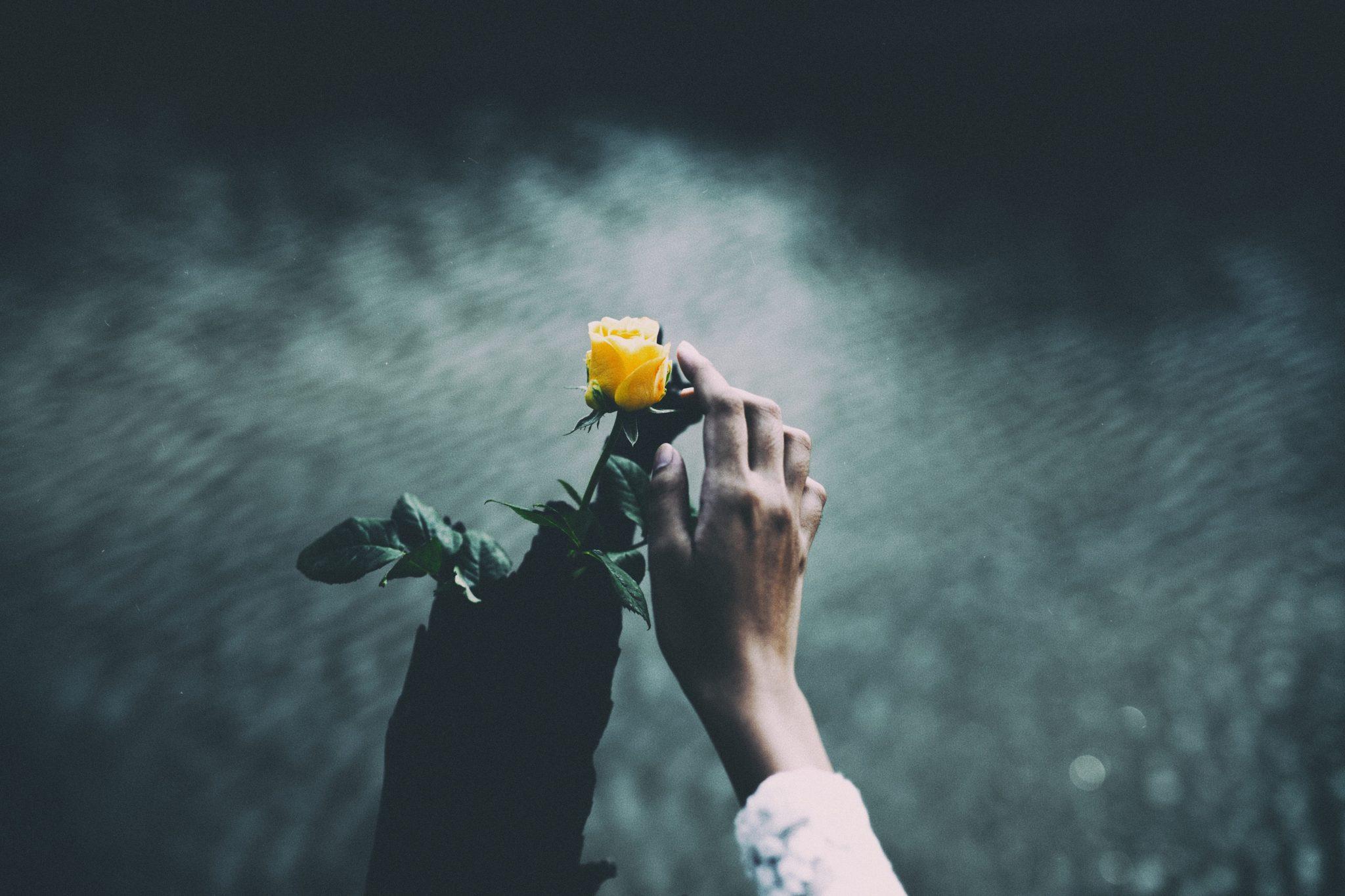 Sense of smell- Memories